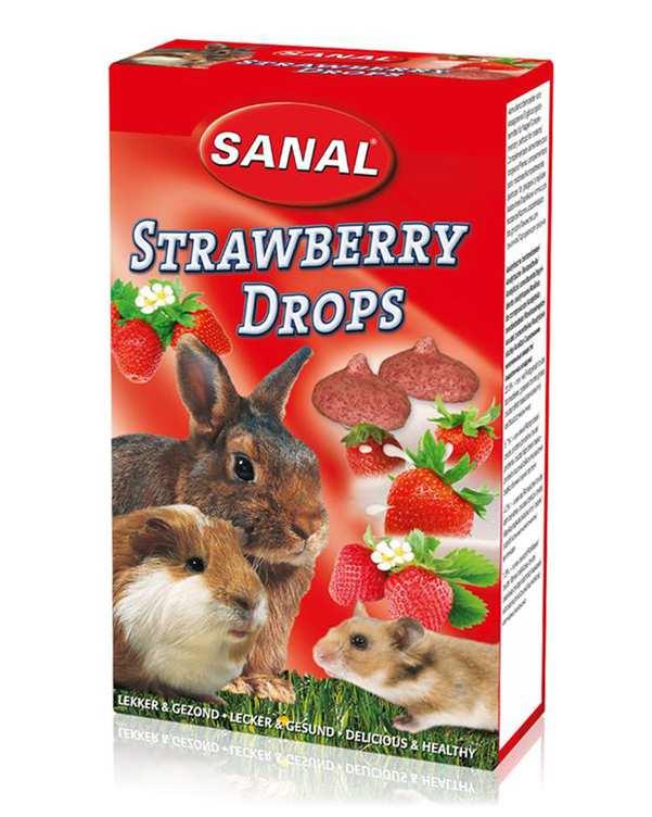 مکمل مولتی ویتامین توت فرنگی مخصوص جوندگان 45 گرمی Sanal
