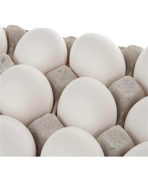 شانه 20 عددی تخم مرغ تلاونگ