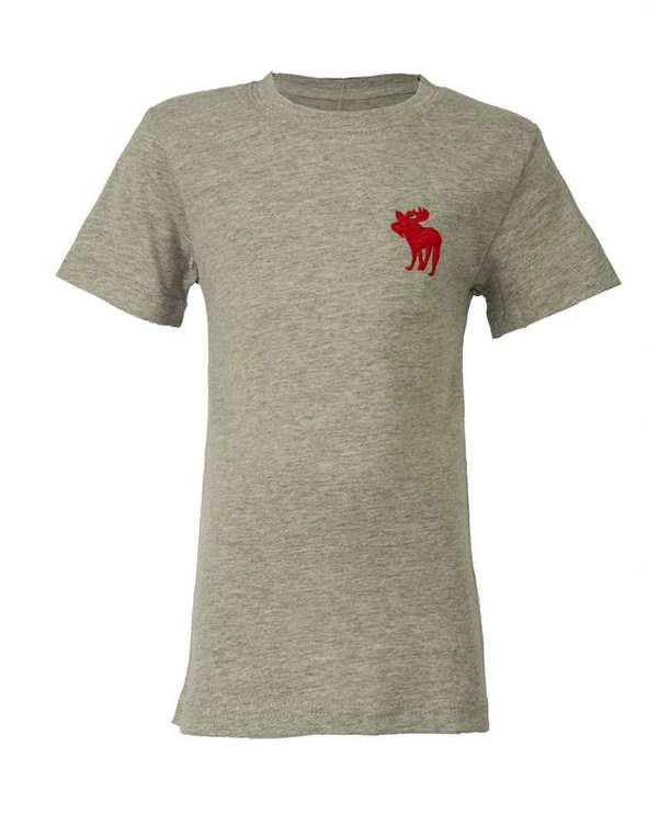 تی شرت پسرانه نخی طوسی ابرکرومبی اند فچ