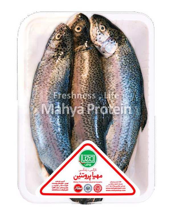 ماهی قزل آلا شکم خالی 1 کیلوگرمی مهیا پروتئین