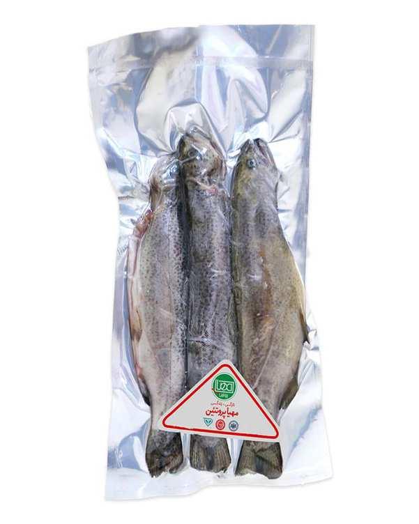ماهی قزل آلا منجمد 1 کیلو گرمی مهیا پروتئین
