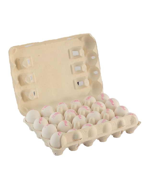 بسته 24 عددی تخم مرغ سیمرغ